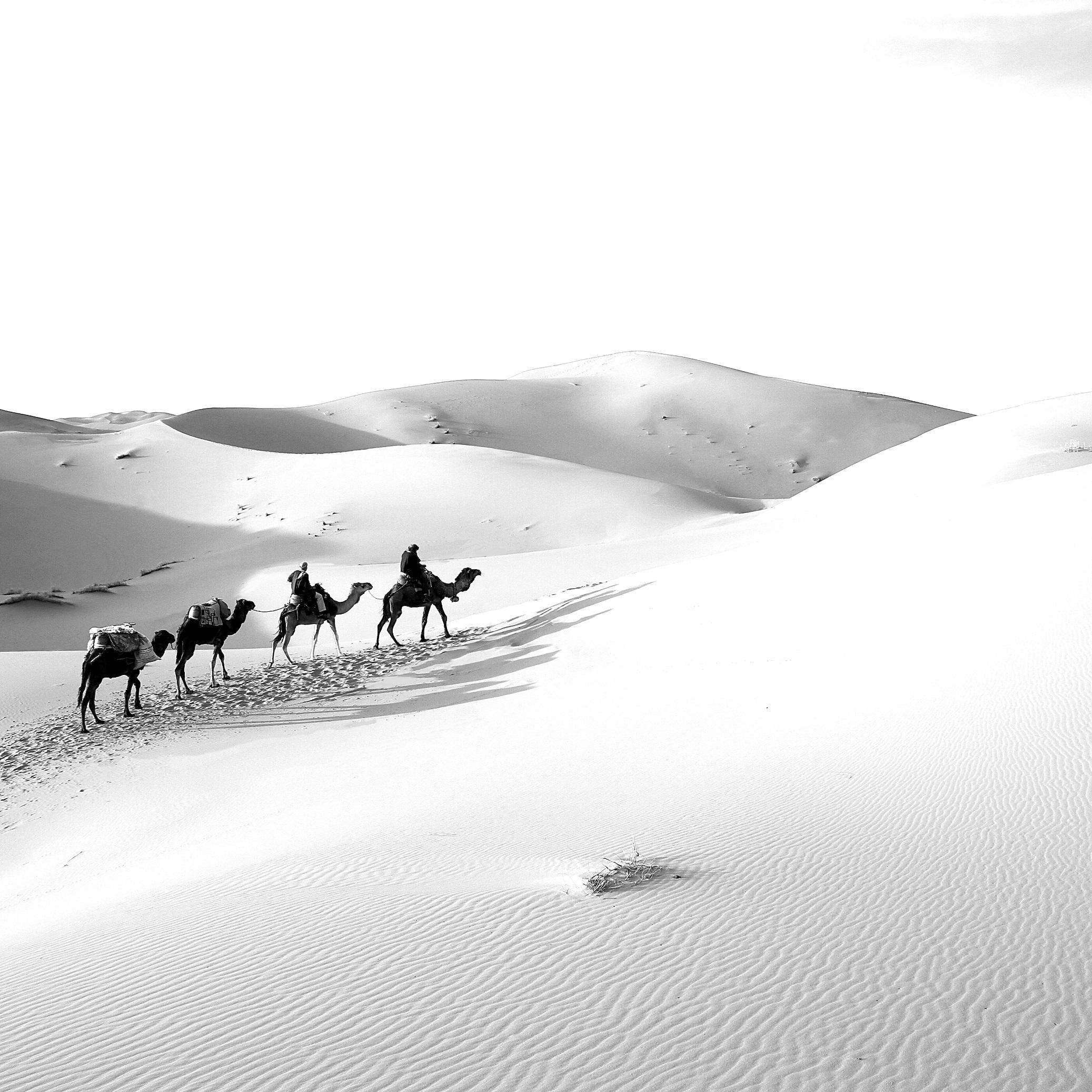 Papá Noel, viajes en camello