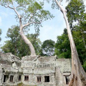 Destinos preferidos. Angkor