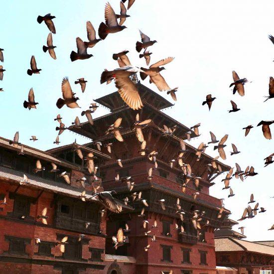 Motivos para viajar a Nepal