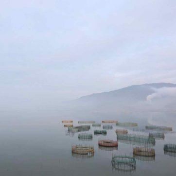 redes para cangrejos en Xiapu, China