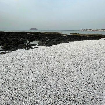 Playa Popcorn en Corralejo